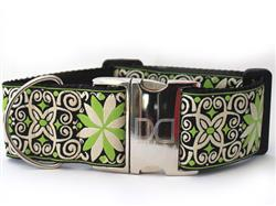 Pinwheel Dutch Spring Extra Wide Dog Collar
