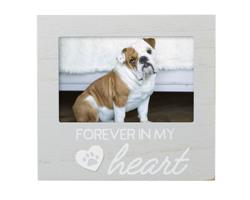 Forever In my Heart Pet Memorial Frame,  Gray