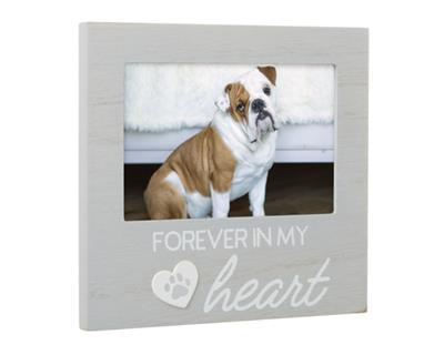 Forever In my Heart Pet Memorial Frame,  Gray