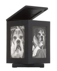 Rotating Pet Memory Box, Black