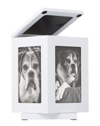 Rotating Pet Memory Box, White