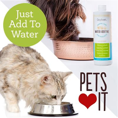 Pet Water Additive for Dogs & Cats by Oxyfresh  - 16 oz. Bottle