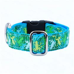Coqui Surf Essential Collars and Leads