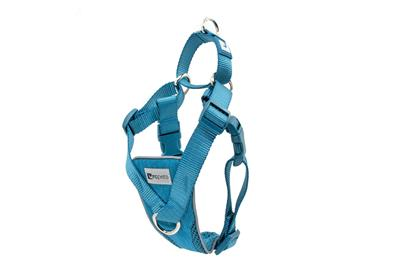 Tempo No Pull Harness - Heather Teal