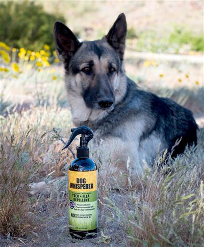 Dog Whisperer Tick and Flea Repellent - 16 oz