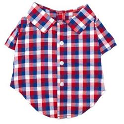 Red/White/Blue Check Shirt