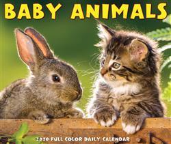 Baby Animals 2020 Box Calendar