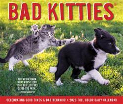 Bad Kitties 2020 Box Calendar