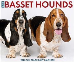 Basset Hounds 2020 Box Calendar