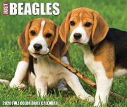 Beagles 2020 Box Calendar
