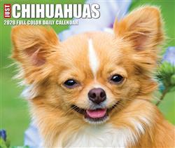 Chihuahuas 2020 Box Calendar