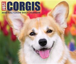 Corgis 2020 Box Calendar