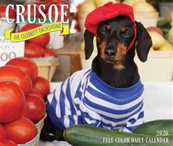 Crusoe the Celebrity Dachshund 2020 Box Calendar