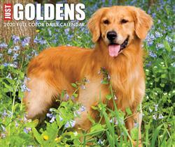 Goldens 2020 Box Calendar