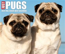 Pugs 2020 Box Calendar