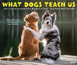 What Dogs Teach Us 2020 Box Calendar