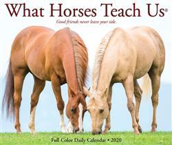 What Horses Teach Us 2020 Box Calendar