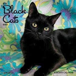 Black Cats 2020 Mini Calendar