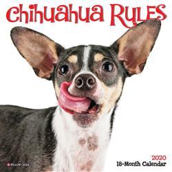 Chihuahua Rules 2020 Mini Calendar