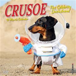 Crusoe the Celebrity Dachshund 2020 Mini Calendar