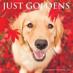Goldens 2020 Mini Calendar