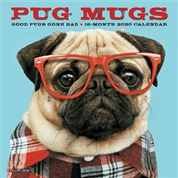 Pug Mugs 2020 Mini Calendar