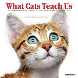 What Cats Teach Us 2020 Mini Calendar