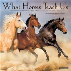 What Horses Teach Us 2020 Mini Calendar