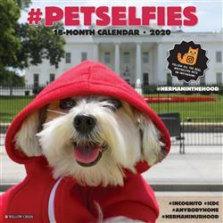 #Petselfies 2020 Wall Calendar