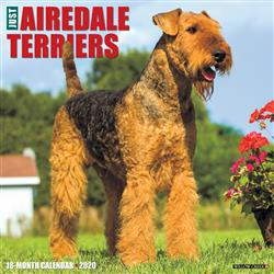 Airedale Terriers 2020 Wall Calendar