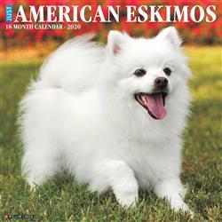 American Eskimos 2020 Wall Calendar