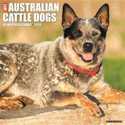 Australian Cattle Dogs 2020 Wall Calendar