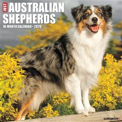 Australian Shepherds 2020 Wall Calendar