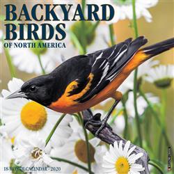 Backyard Birds 2020 Wall Calendar