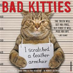 Bad Kitties 2020 Wall Calendar