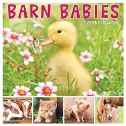 Barn Babies 2020 Wall Calendar
