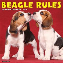 Beagle Rules 2020 Wall Calendar