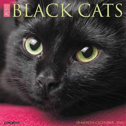 Black Cats 2020 Wall Calendar