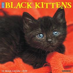 Black Kittens 2020 Wall Calendar