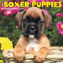 Boxer Puppies 2020 Wall Calendar