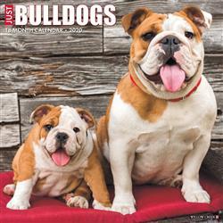 Bulldogs 2020 Wall Calendar