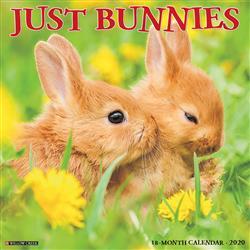 Bunnies 2020 Wall Calendar