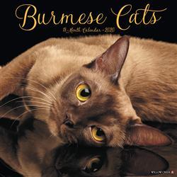 Burmese Cats 2020 Wall Calendar