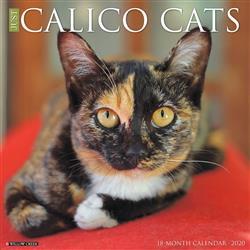 Calico Cats 2020 Wall Calendar