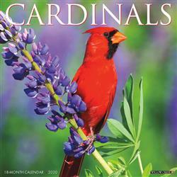 Cardinals 2020 Wall Calendar