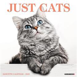 Cats 2020 Wall Calendar