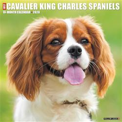 Cavalier King Charles Spaniels 2020 Wall Calendar