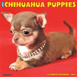 Chihuahua Puppies 2020 Wall Calendar