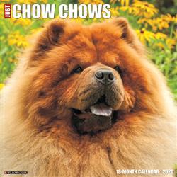 Chow Chows 2020 Wall Calendar