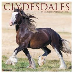 Clydesdales 2020 Wall Calendar